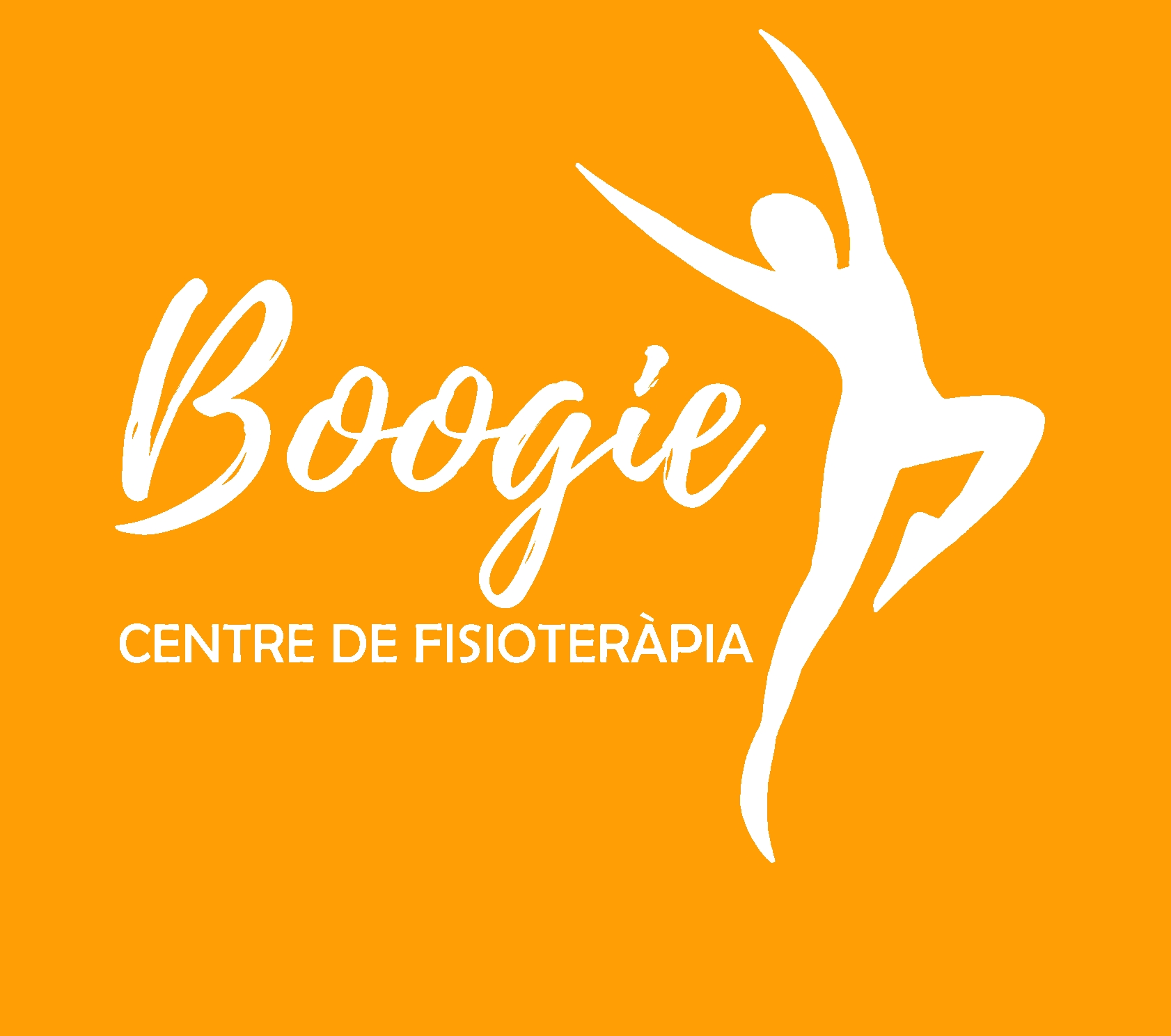 logo FISIO BOOGIE definitiu taronja